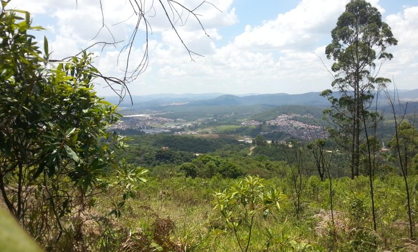Vista da trilha (Foto: Karin Salomão)
